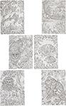 Товар для творчества  Bondibon  Набор раскрасок антистресс В лесу, 6 листов 30х21 см ВВ1711