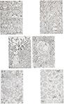 Товар для творчества  Bondibon  Набор раскрасок антистресс В саду, 6 листов 30х21 см ВВ1712