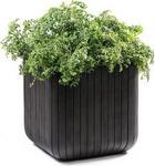 Емкость для растений  Keter  CUBE PLANTER M