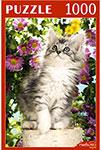 Настольная развивающая и обучающая игра  Рыжий кот  1000 элементов. ЛЮБОПЫТНЫЙ КОТЁНОК КБ1000-7881